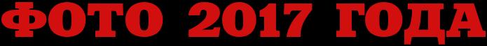 ИЗБРАННОЕ ФОТО 2017 года